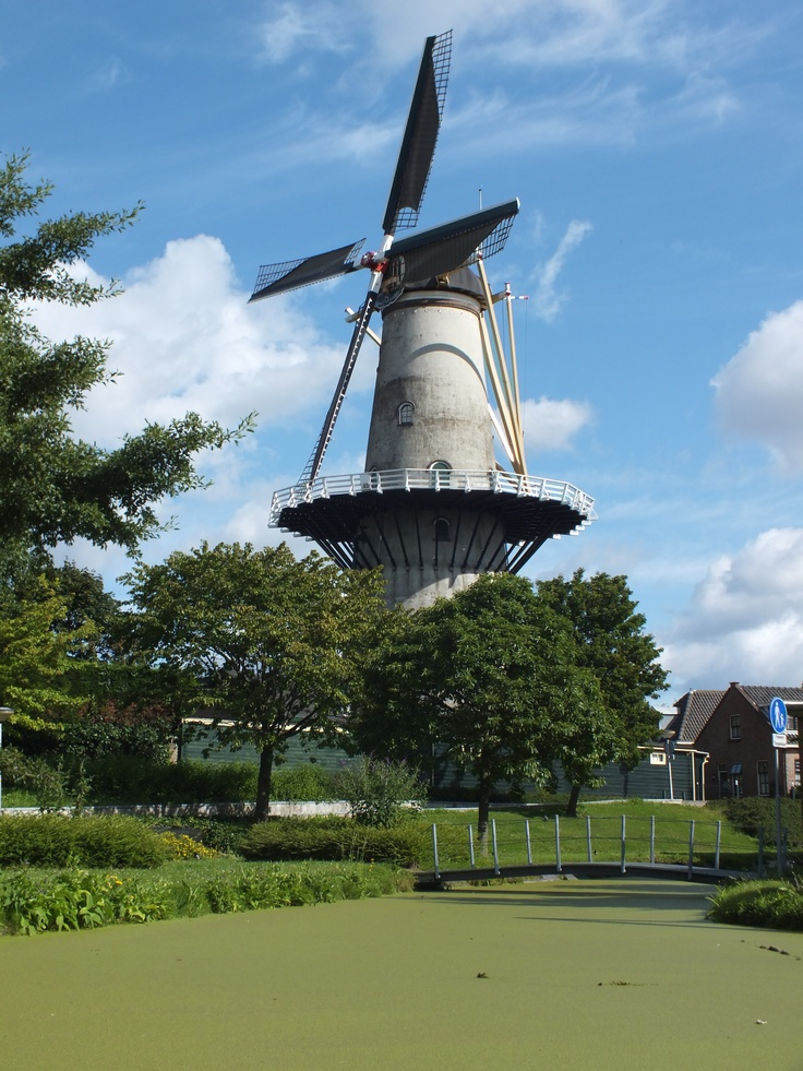 Molen in Wateringen, The Netherlands