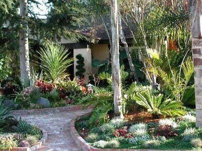 How To Design A South Texas Bamboo Backyard Landscape Plan