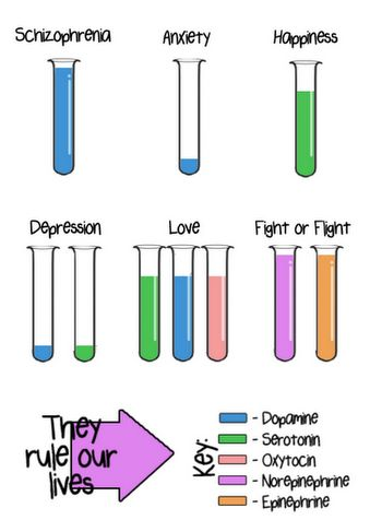 Good visual on neurotransmitters & mental conditions: