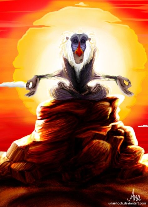Rafiki does some meditating OM | Yoga Blend | Pinterest ...