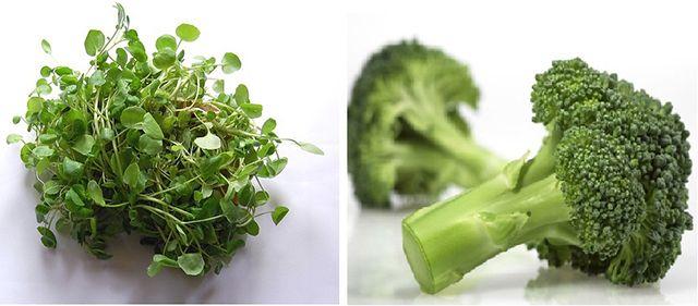 Daganatgyilkos kombináció! Ez a két élelmiszer együtt fogyasztva megöli a rákos sejteket! - Megelőzés - Test és Lélek - www.kiskegyed.hu