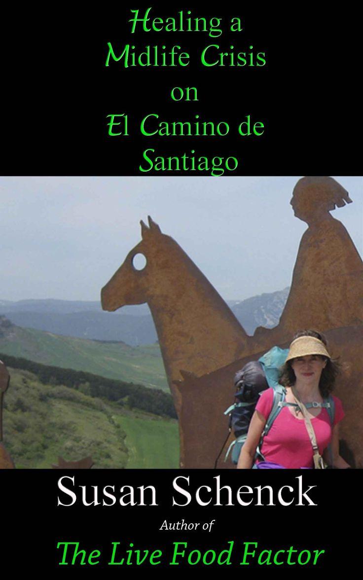 Amazon: Healing A Midlife Crisis On El Camino De Santiago Ebook: Susan
