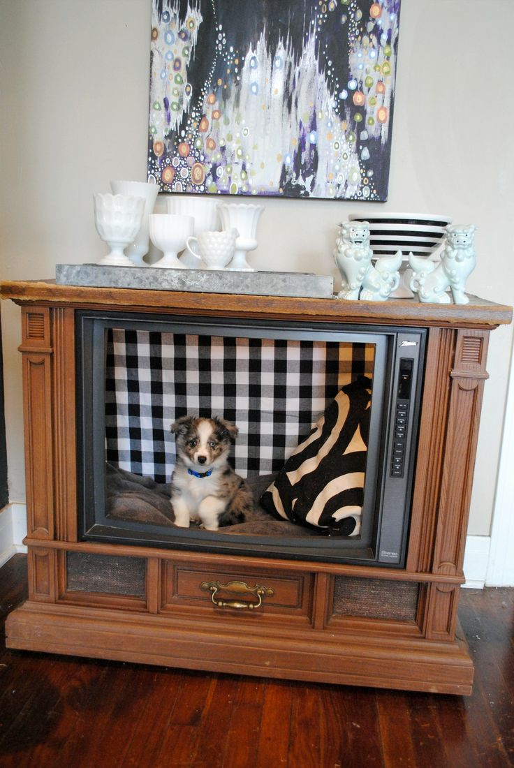 Bed With Tv Built In Best 20 Tv Dog Beds Ideas On Pinterest Cheap Dog Crates Cute