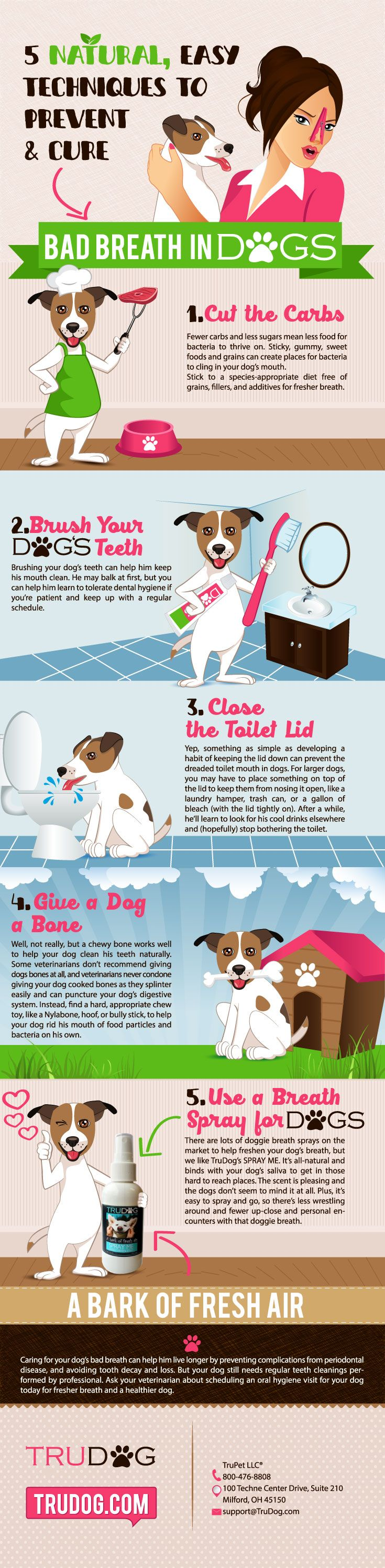 Discover 5 Natural/Easy Techniques to Prevent & Cure Bad Breath in Dogs http://trudog.com/home/5-natural-easy-techniques-to-prevent-and-cure-bad-breath-in-dogs/?utm_source=Pinterest&utm_medium=social&utm_campaign=Jeremy%20Pinterest&utm_term=organic&utm_content=5%20Techniques%20new