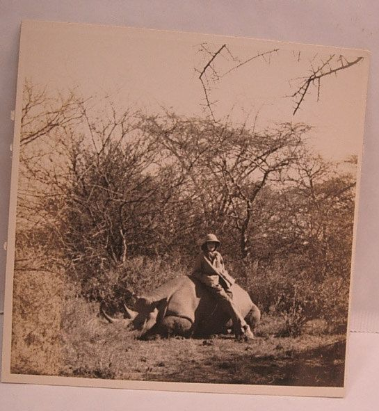 """This is a pre 1940s Safari photo with a woman sitting on a Rhinoceros. 5 1/4 x 5 1/4"""""""