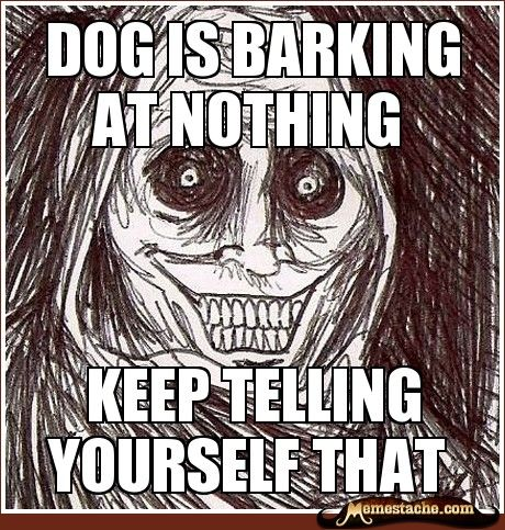 dog is barking at nothing / keep telling yourself that: Scary, Creepy, House Guest, Funny Stuff, Funnies, Humor, Things, Funny Memes
