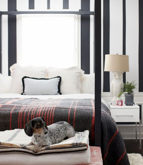 """""""Gareth, get Roscoe out of the guest room! I'm open to mixing patterns, but I have my limits."""": Idea, Blanket, Stripes Wall, Modern Patterns, Black And White, Bedrooms Design, Masculine Bedrooms, Chalkboards Paintings, White Bedrooms"""