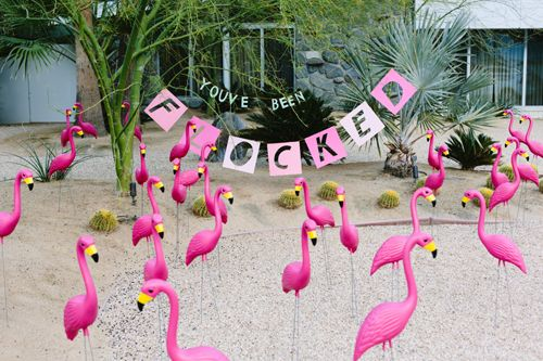 """The House That Lars Built.: """"You've been flocked"""" prank for April Fools"""