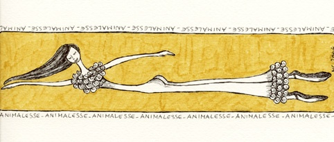 ANIMALESSE 2006 lumachina di mare