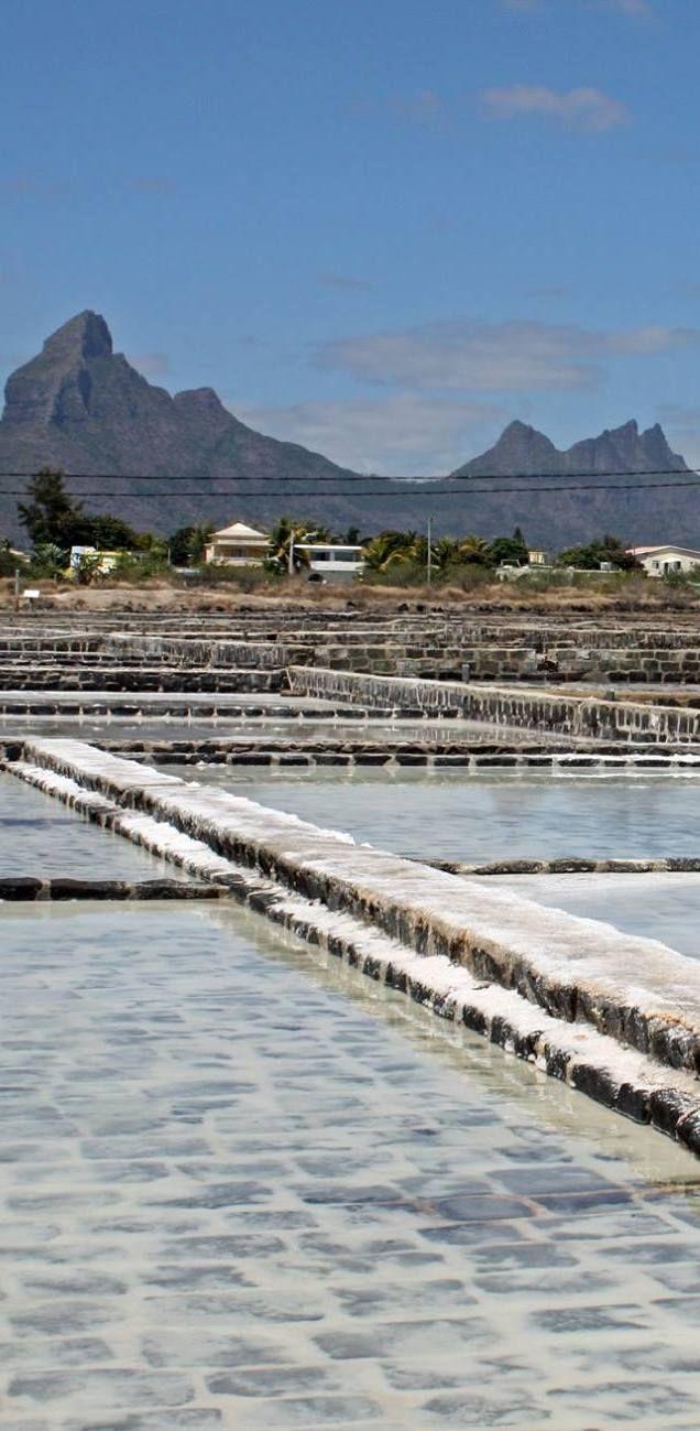 Salt pans in Black River