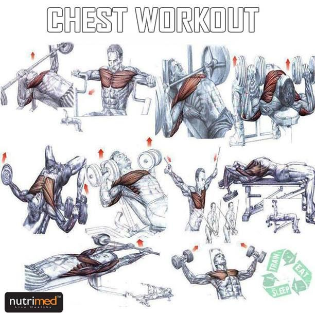 - Chest Workout -     www.nutrimed.co.in