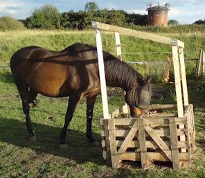 wooden pallet Horse Feeders Hay - Bing Images @Catherine Dorcak (pinning this for compost bin ideas)
