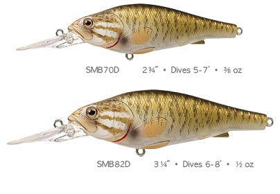 Live target smallmouth bass lure