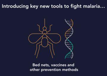 Ocho países americanos libran la batalla final contra la malaria