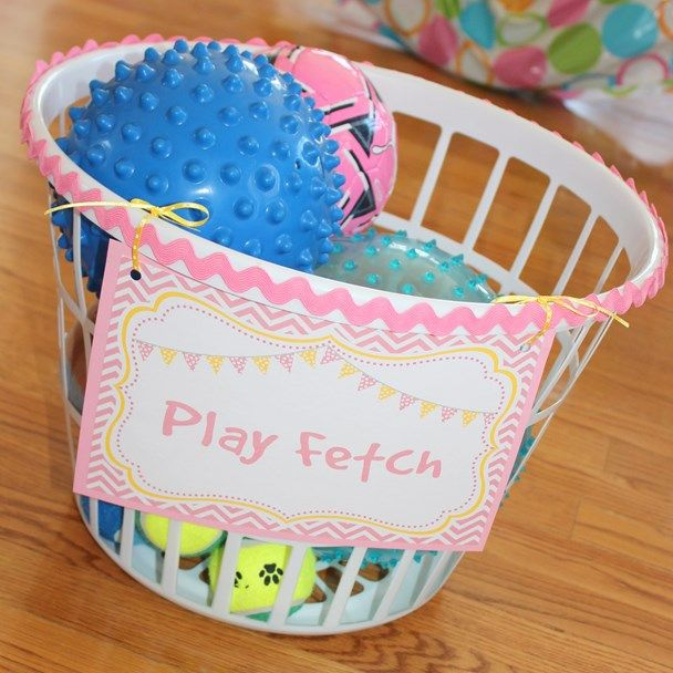 """Play """"fetch"""" at a puppy themed birthday party - just fill a laundry basket with balls! www.weheartparties.com"""