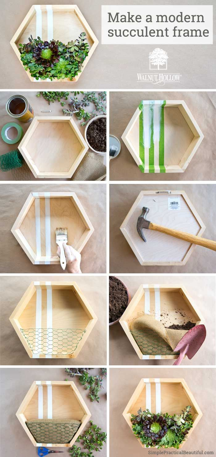 how to make a plant picture frame