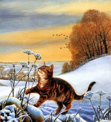 68 Best Images About Art Chrissie Snelling On Pinterest