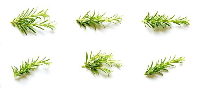 Photo By Devanath   Pixabay   #rosemary #set #collection #cooking #cookingram #cookingclass #cookingtime #cookingwithlove