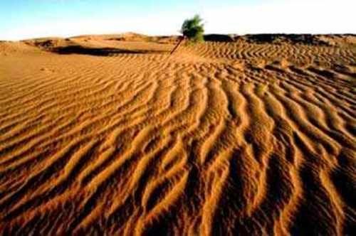 Η αβάσταχτη ερημιά  με υπομονή  κόκκους   μετράει την εκατομμυριοστή  λέξη   στην  άμμο  της  να  γράψει. Η ψυχή δεν λογιάζει,δεν  επιλέγει αρσενικό η θηλυκό, σώμα  κουρασμένο ή νεανικό, προσκήνιο η παρασκήνιο. Φτάνει ερωτικά  να  την κατέχεις. Στο  μπουκάλι να την βάλεις να τη ρίξεις στη θάλασσα από το  καλντερίμι,εκείνη θα αφεθεί  στο κύμα  να  θαλασσοπνιγεί  μαζί  του,  μέχρι  στα βράχια να σε  βγάλει  όπου   ναυαγοί  σε  περιμένουν  κι άλλοι, να  ψάξετε  μαζί  για  την  ΑΓΑΠΗ !!!!!!!!!