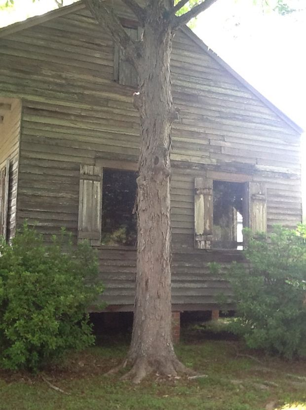 Real Ghost Pictures: Haunting in the Cajun Settlements