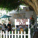 Fig Tree Cafe - Eat - Thrillist San Diego