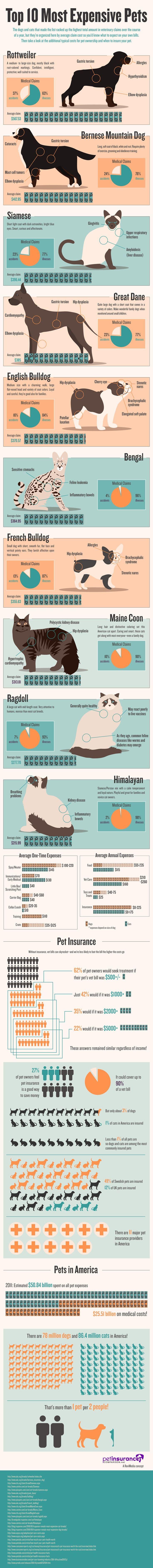 #DogCare  Info-graphic Courtesy: Petinsurance