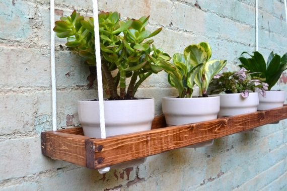 1000 Ideas About Indoor Wall Planters On Pinterest Wall