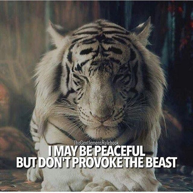 I maybe peaceful..