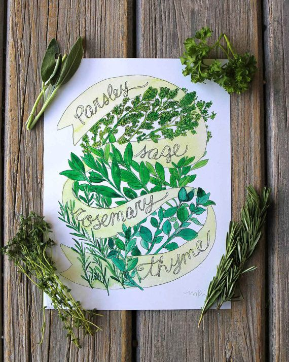 Parsley Sage Rosemary & Thyme Kitchen Art Print