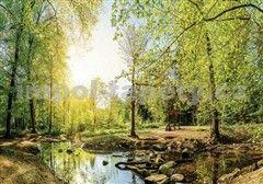 Vliesové fototapety les s potokem 104 cm x 70,5 cm
