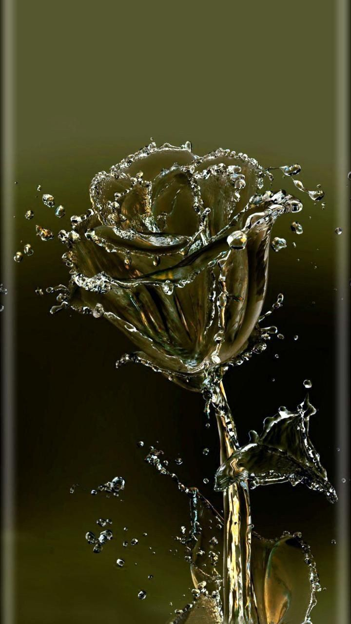 Twitter Water Art Digital Art Photography Water Droplets Art Full screen water drop wallpaper rose
