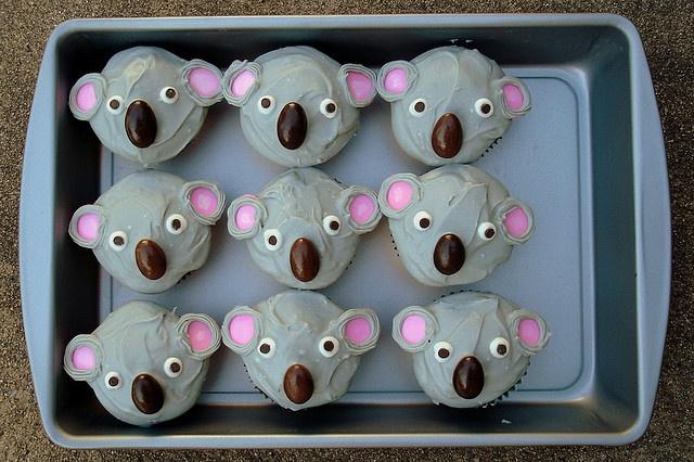 koala cupcakes