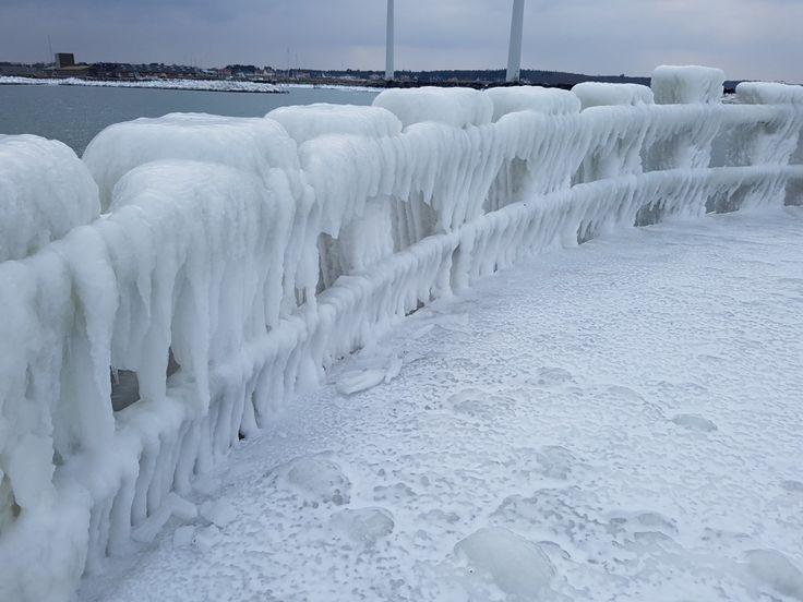 Forfrossent ispanser og forfløjne forårsdrømme   NOGET I OVNEN HOS BAGENØRDEN