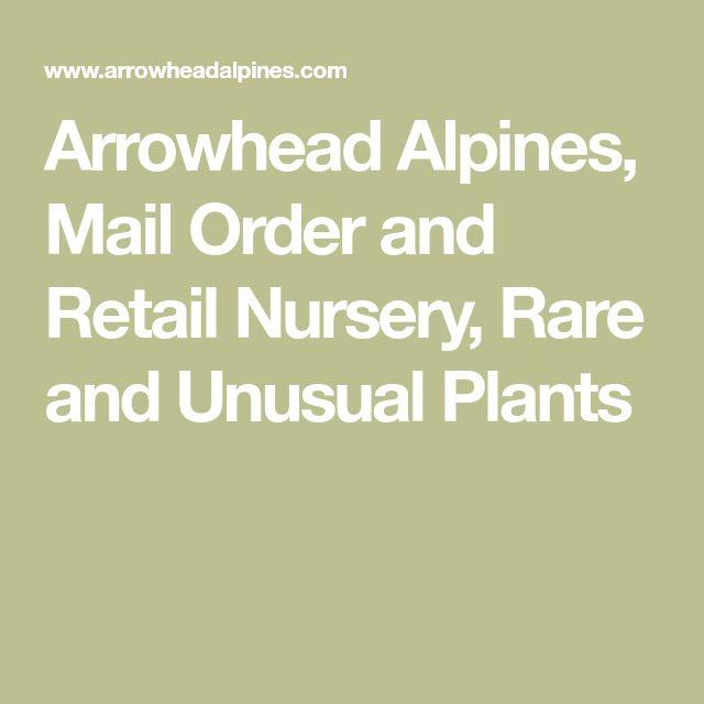 Arrowhead Alpines, Mail Order and Retail Nursery, Rare and Unusual Plants