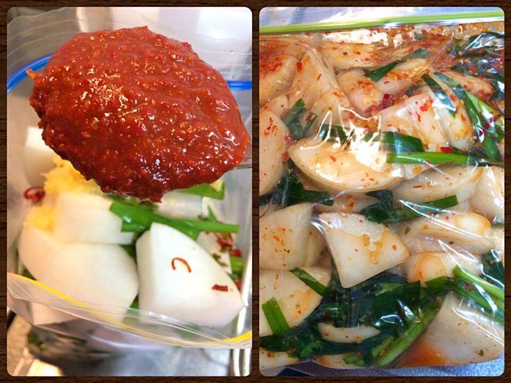 風流料理人's dish photo 浅漬けの素で カクテキ作ります | http://snapdish.co #SnapDish #レシピ #簡単料理 #節約料理 #おつまみ #保存食/常備菜 #韓国料理