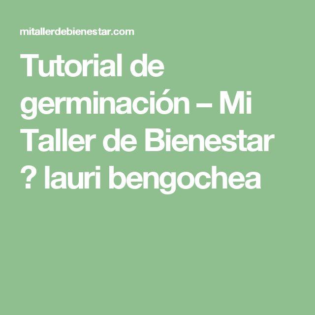 Tutorial de germinación – Mi Taller de Bienestar 💚 lauri bengochea