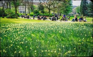 Springtime at the Jardin du Luxembourg in Paris: always divine. - Linh Nguyen/Some rights reserved under Creative Commons license.