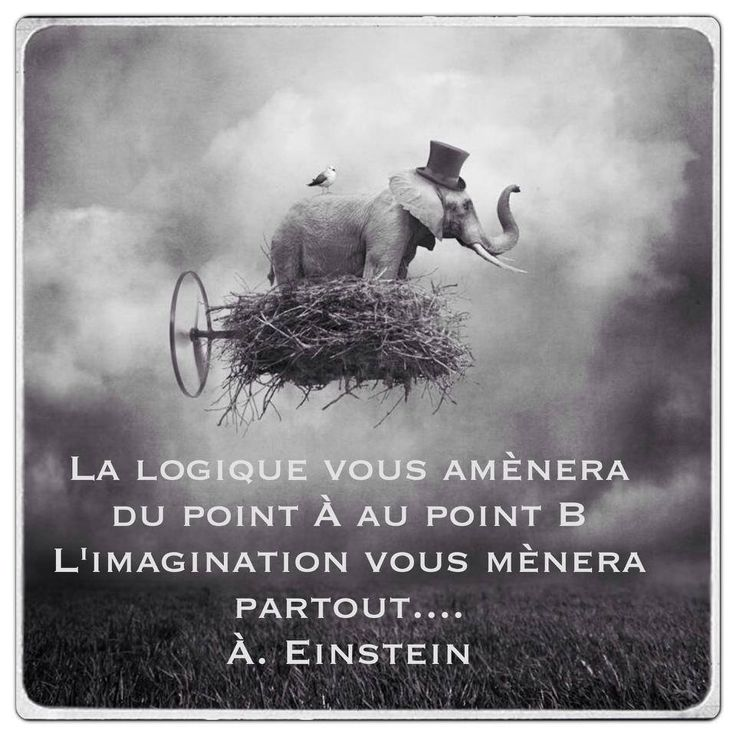 La logique vous amènera du point A au point B. L'imagination vous mènera partout. (Albert EINSTEIN)
