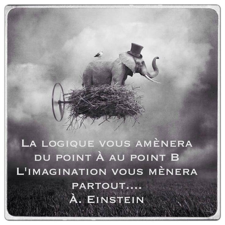 Imagine... #Citation #Humour #HistoireDrole #rire #ImageDrole #myfashionlove www.myfashionlove.com