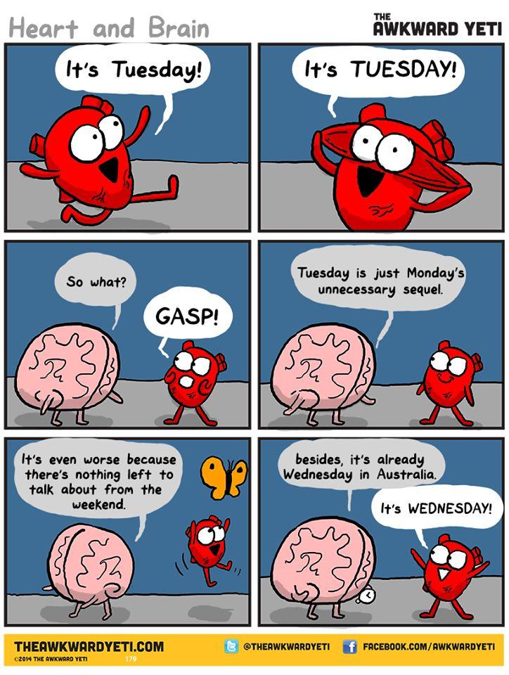 head heart and guts pdf
