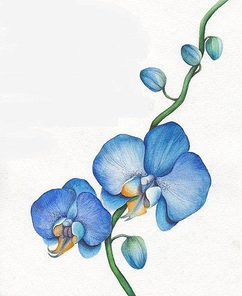 Оригинал схемы вышивки «Акварельные цветы»