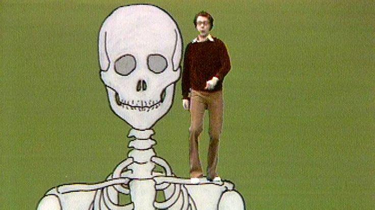 Kroppen - Avsnitt 1 av 5: Kroppen - Platta som pannkakor?