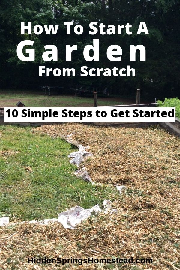 How To Start A Garden In 10 Simple Steps Starting A Vegetable