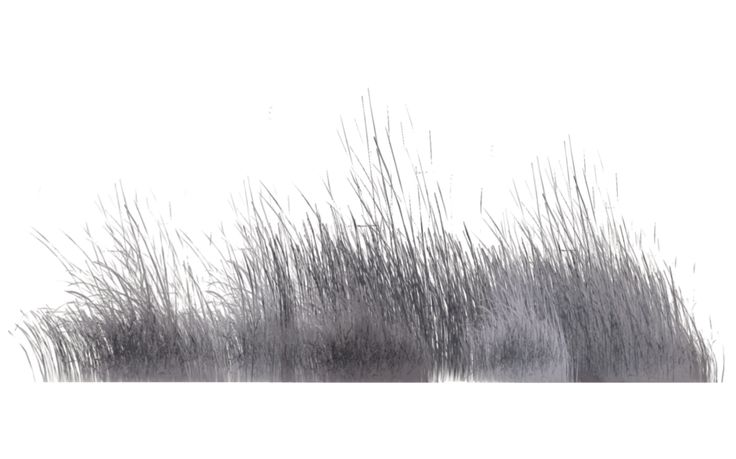 Winter Vegetation (8) by wolverine041269 on DeviantArt