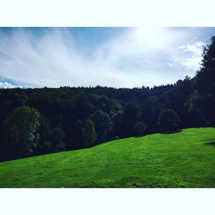 The glorious sunshine experienced in Devon  #lifestyle #scenery #bestview Lets connect on facebook: http://ift.tt/2gq1dB7