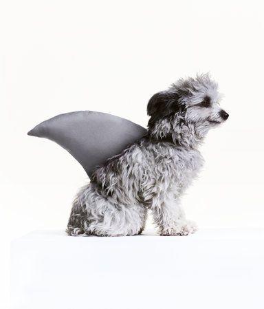 Wattierte Haifischflosse   Grau/Hai   Damen   H&M DE