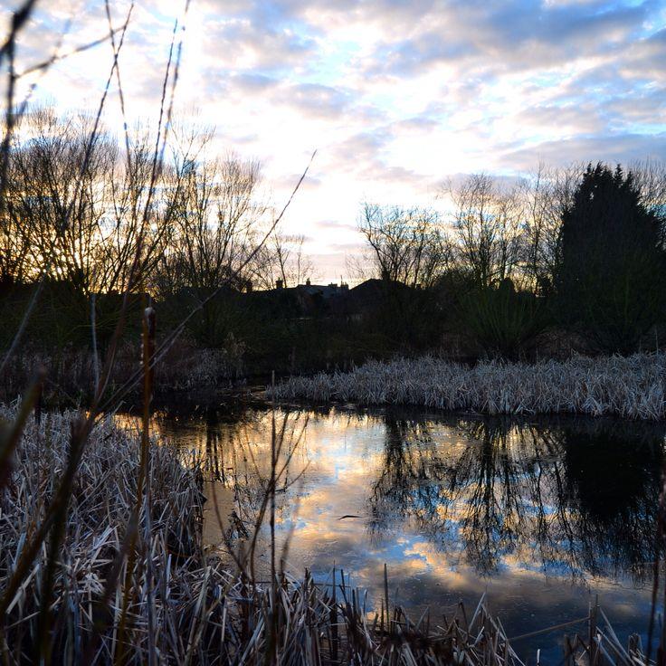 Stotfold Nature Reserve