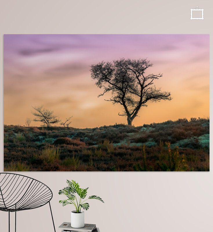 Prachtige foto's en digitale kunst voor aan de muur in huis of op kantoor.Een eenzame boom op een heuvel aan het einde van de winter. Hier en daar ligt nog wat sneeuw op de grond. Het is laat in de middag, de zon gaat onder en de lucht kleurt oranje en paars.