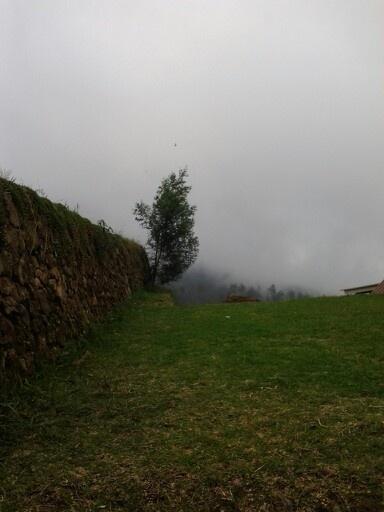 Smog on the mountain