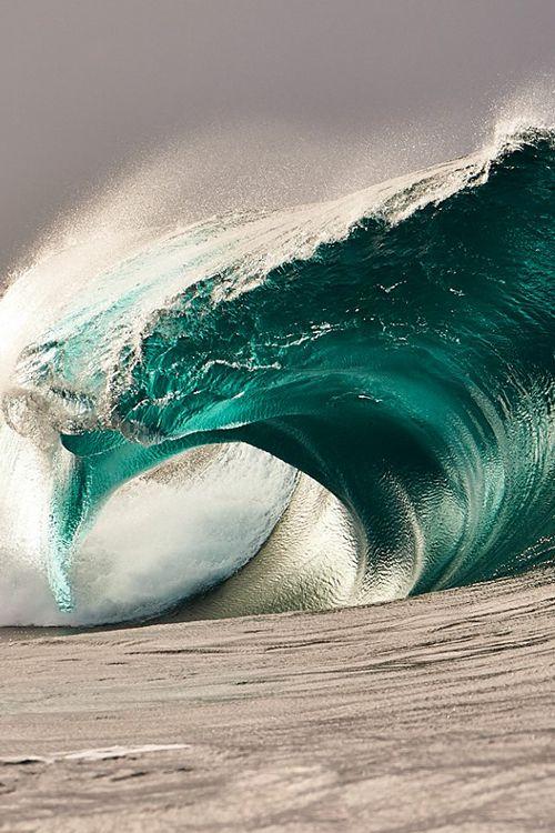 #SaltSoaked #Waves www.zealdesignz.com Follow us at facebook.com/zealdesignz for our latest Salt Soaked apparel.